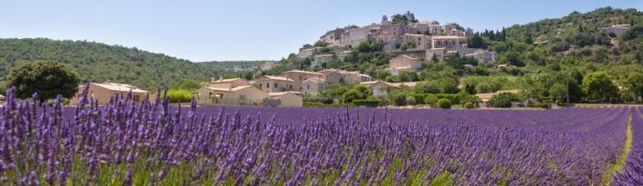 2_paysages_de_provence_petit_marseillais